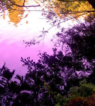 31_BELFAST_photography_photograph_love_-peace_art_Northern_Ireland_-Lise_Mc_Greevy