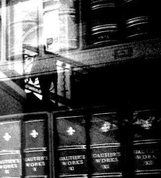 9_BELFAST_photography_photograph_love_-peace_art_books_read_library_Northern_Ireland_-Lise_Mc_Greevy